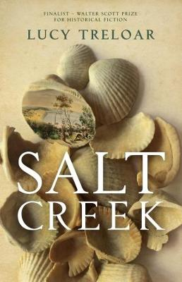 Salt Creek (Hardback)