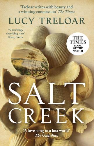 Salt Creek (Paperback)