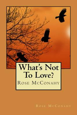 What's Not To Love? (Paperback)