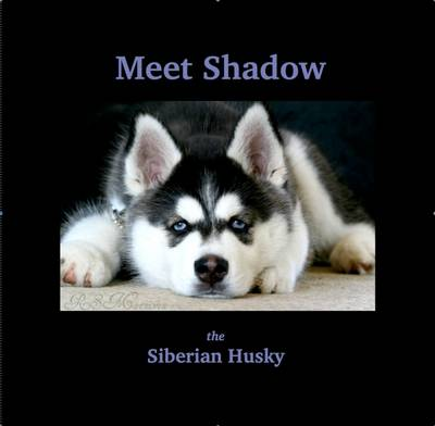 Meet Shadow: The Siberian Husky (Paperback)