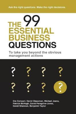 The 99 Essential Business Questions: To Take You Beyond the Obvious Management Actions (Paperback)