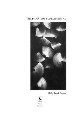 THE Phantom Fundamental (Paperback)