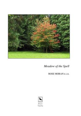The Meadow of the Spell (Paperback)