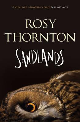 Sandlands (Paperback)