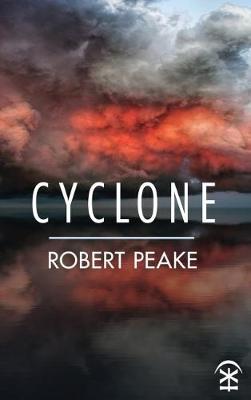 Cyclone (Paperback)