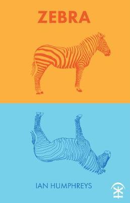 Zebra (Paperback)