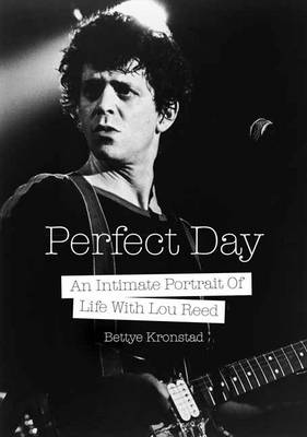 Perfect Day: A First Wife's Intimate Portrait of Life with Lou Reed (Paperback)