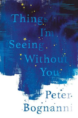 Things I'm Seeing Without You (Paperback)