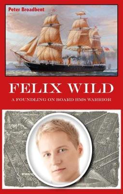 Felix Wild: A Foundling on Board HMS Warrior (Paperback)