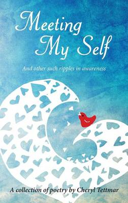 Meeting Myself (Paperback)