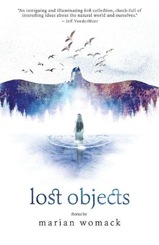 Lost Objects (Paperback)
