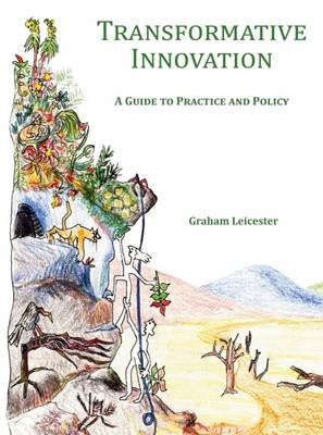 Transformative Innovation: A Guide to Practice and Policy (Hardback)