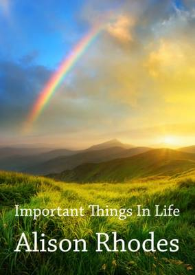 Important Things in Life (Paperback)