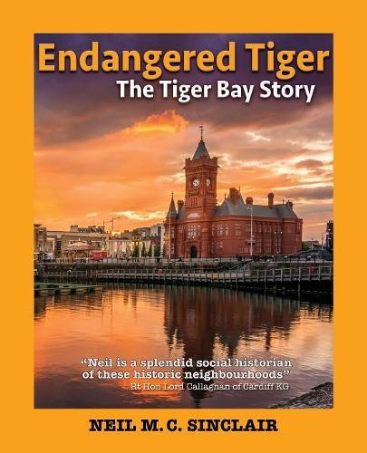 Endangered Tiger: The Tiger Bay Story - Wordcatcher History (Paperback)