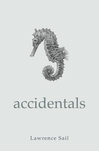 Accidentals (Hardback)