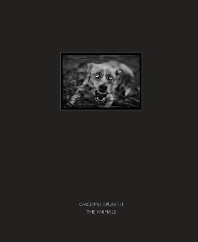 The Animals (Hardback)
