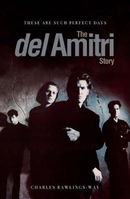 These Are Such Perfect Days: The Del Amitri Story (Paperback)