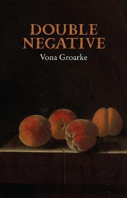 Double Negative (Hardback)