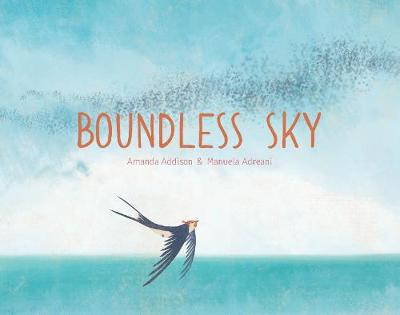 Boundless Sky (Hardback)