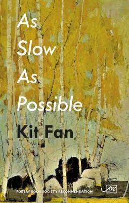 As Slow As Possible (Hardback)