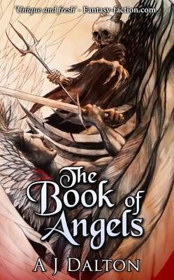 The Book of Angels (Paperback)