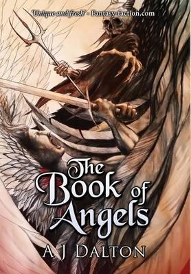 The Book of Angels (Hardback)