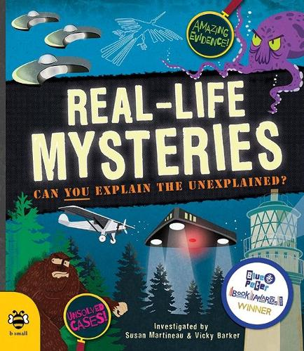 Real-Life Mysteries: Can You Explain the Unexplained? (Paperback)