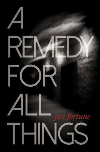 Remedy for All Things, A (Paperback)