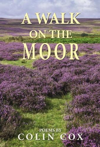 A Walk On The Moor (Hardback)