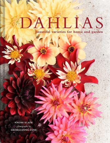 Dahlias: Beautiful varieties for home and garden (Hardback)