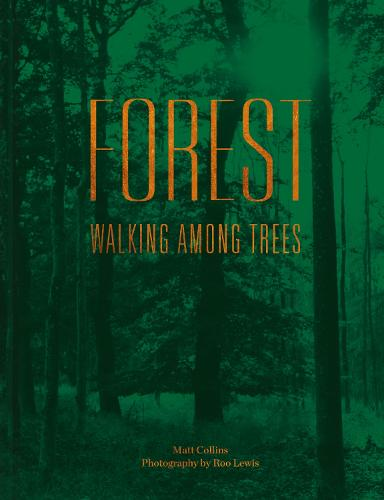 Forest: Walking among trees (Hardback)