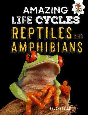 Reptiles and Amphibians - Amazing Life Cycles (Hardback)