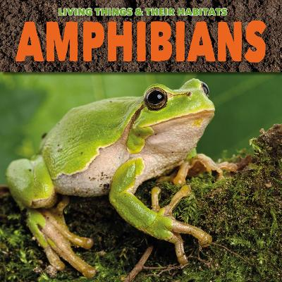 Amphibians - Living Things and Their Habitats (Paperback)