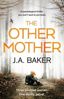 The Other Mother (Paperback)