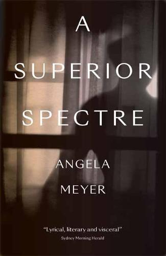 A Superior Spectre (Paperback)