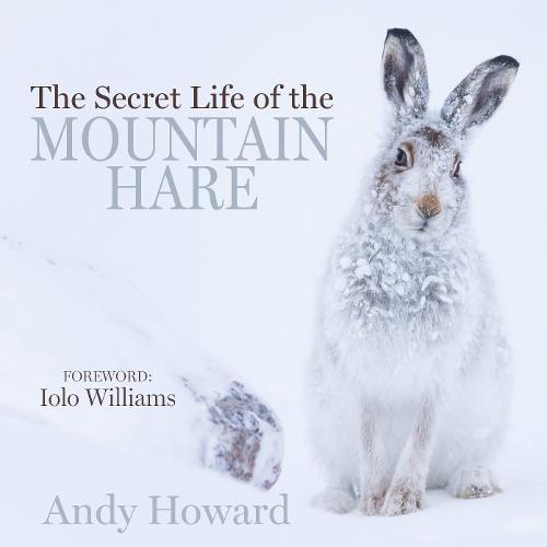 The Secret Life of the Mountain Hare (Hardback)