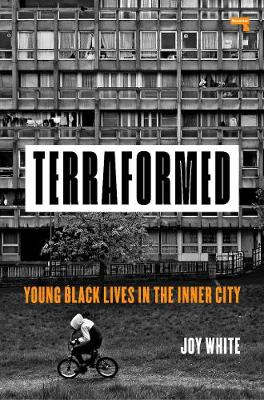 Terraformed: Young Black Lives in the Inner City (Paperback)
