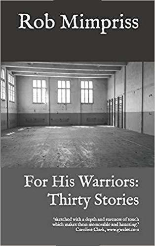 For His Warriors: Thirty Stories (Paperback)