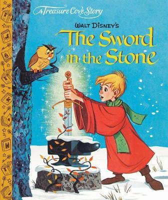 A Treasure Cove Story - The Sword in the Stone (Hardback)