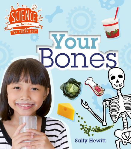 Human Body: Your Bones - Science in Action (Paperback)