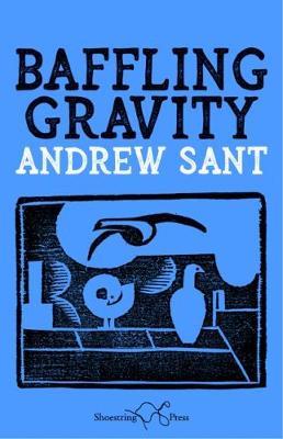 Baffling Gravity (Paperback)