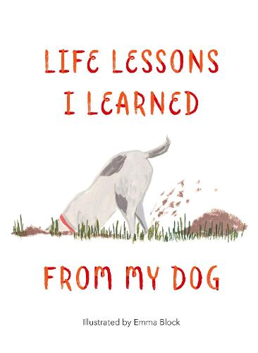 Life Lessons I Learned from my Dog (Hardback)