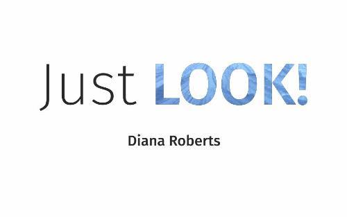 Just LOOK! (Paperback)
