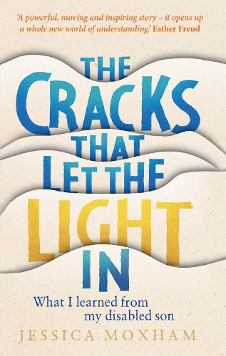The Cracks that Let the Light In: What I learned from my disabled son (Hardback)