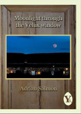 Moonlight through the Velux window (Paperback)