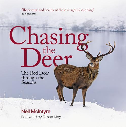 Chasing the Deer: The Red Deer through the Seasons (Hardback)