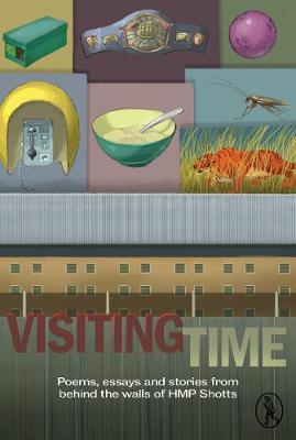 Visiting Time (Paperback)