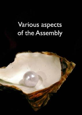 Various aspects of the Assembly 2019 (Paperback)