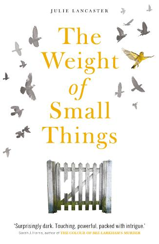 The Weight of Small Things (Paperback)