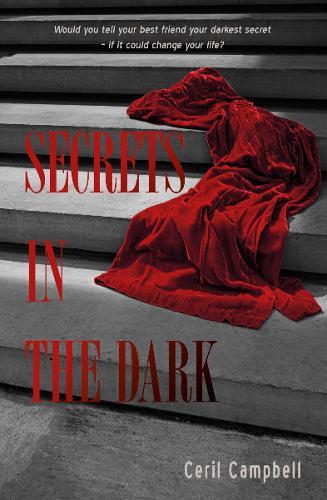 Secrets in the dark (Paperback)